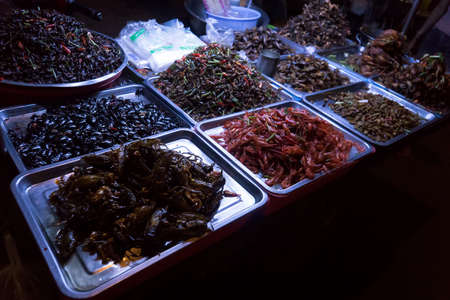 Fried bugs, insects, snakes and worms at street food market. exotic food Asian cuisine