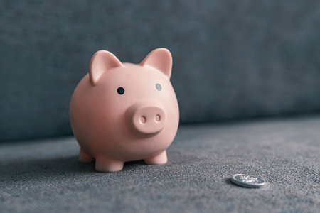 piggy bank in the form of a pig and a silver coin on a dark background with copy space