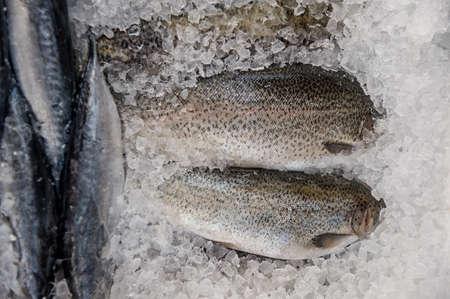 fish in ice: Fresh fish into ice