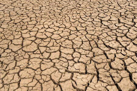 climate: Climate change, the ground is dry, drought, cracked ground Stock Photo