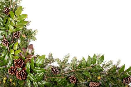 muerdago: Marco de la Navidad de ramas de �rboles de pino y el mu�rdago aislado en el fondo blanco Foto de archivo