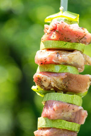 meat skewers: Preparation of meat skewers for barbeque - selective focus, copy space Stock Photo