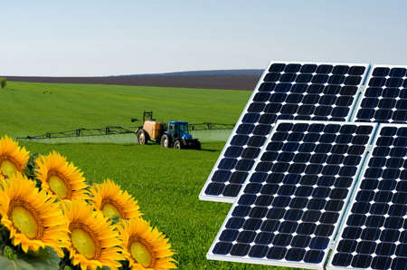 turbin: Photo collage of solar panels against the crops background - conceptual image