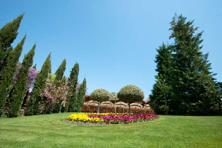 View of an attractive backyard with blooming flowers, conifers and well-kept lawns - wide angle view Stok Fotoğraf