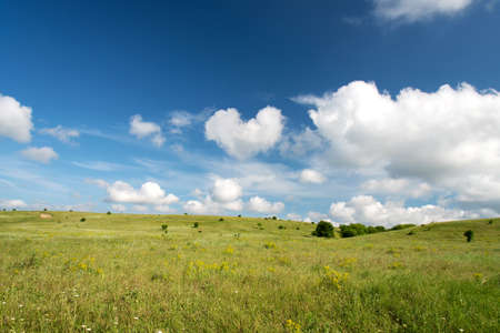 Spring landscape with blue sky and green lawn - space for text