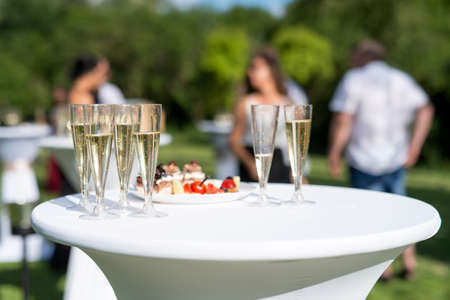 Welcome drink, view of glasses filled with champagne on a table in a garden - selective fokus Stockfoto