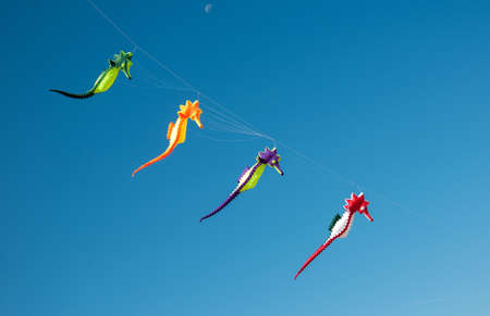 Colorful Dragonflies kites flying in blue sky