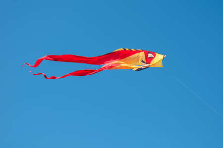 Colorful fish kite flying in blue sky