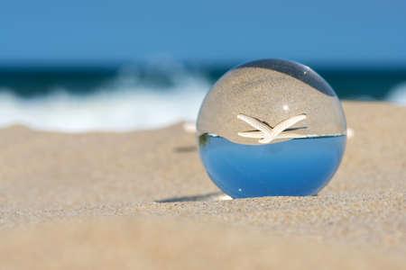 Lens-ball summer vacation landscape with starfish reflection. 版權商用圖片