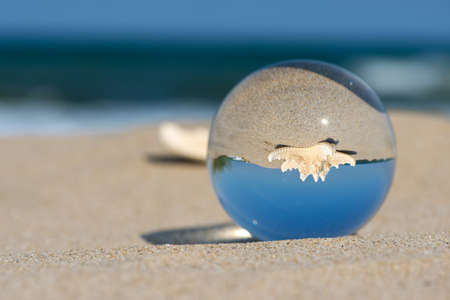 Lens-ball summer vacation landscape with starfish reflection