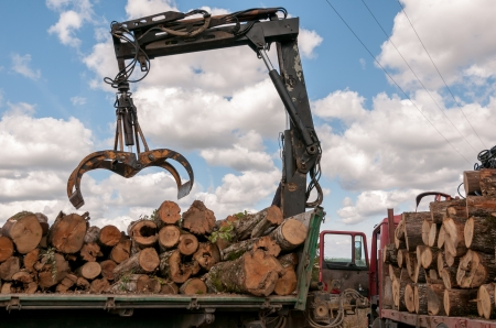 Timber for transportation (loading a truck) Stock Photo