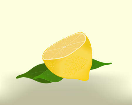 zest: Lemon in a cut with leaves on an abstract background Illustration
