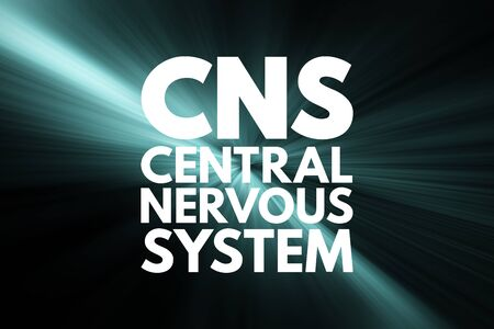 CNS - Central Nervous System acronym, medical concept background
