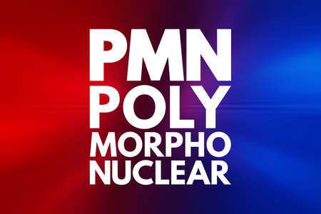PMN - PolyMorphoNuclear acronym, concept background Stock Photo