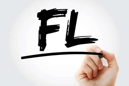 FL - Financial Leverage acronym with marker, business concept background