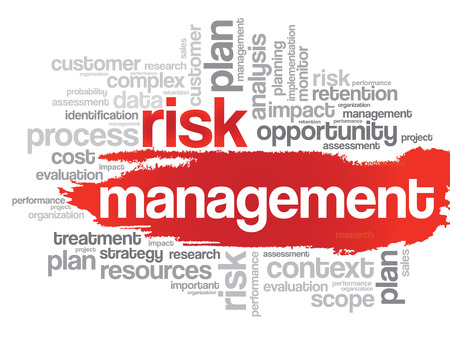 findings: Risk Management word cloud, business concept