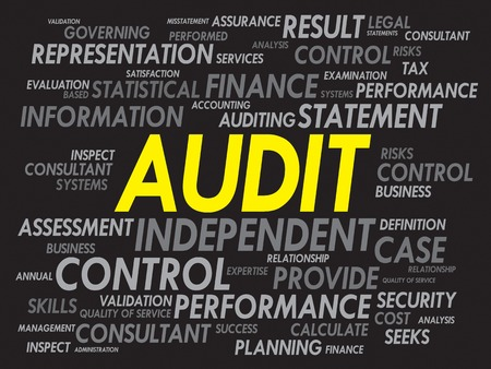 validity: AUDIT word cloud, business concept
