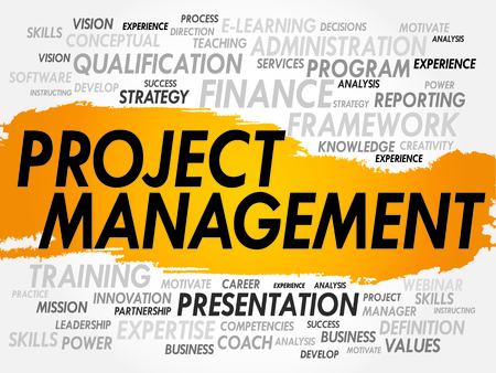 execute: Word cloud of Project Management related items, business concept