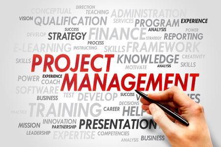 estimating: Project Management word cloud, business concept Stock Photo