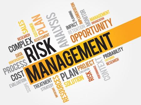 Risk management word cloud, business concept 免版税图像 - 38303315