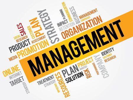 MANAGEMENT word cloud, business concept Vector