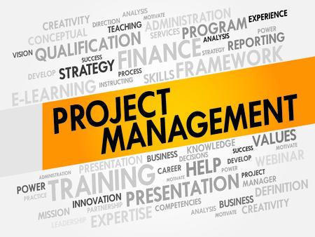 execute: Project Management word cloud, business concept Illustration