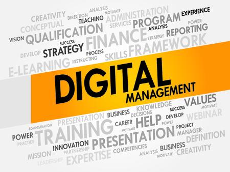 entity: Digital Management word cloud, business concept