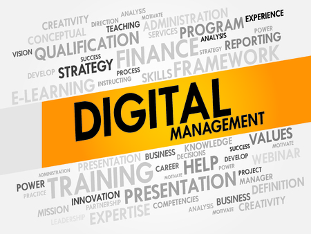 upgrading: Digital Management word cloud, business concept