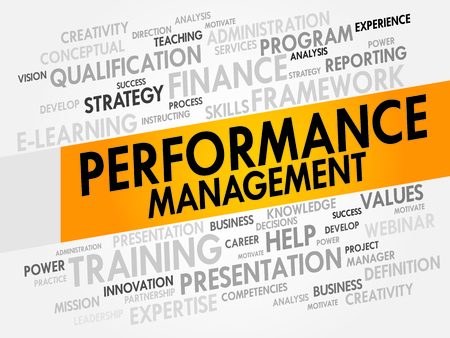 measured: Performance Management word cloud, business concept