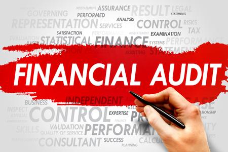 financial audit: Financial Audit word cloud, business concept