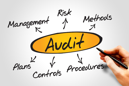 business results: Diagram of Audit diagram process, business concept
