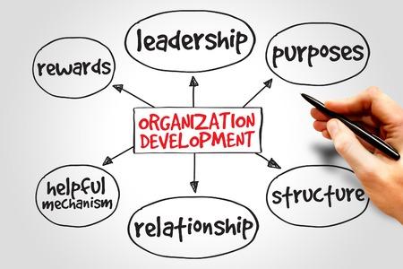 organization: 조직 개발 마인드 맵, 비즈니스 개념 스톡 콘텐츠