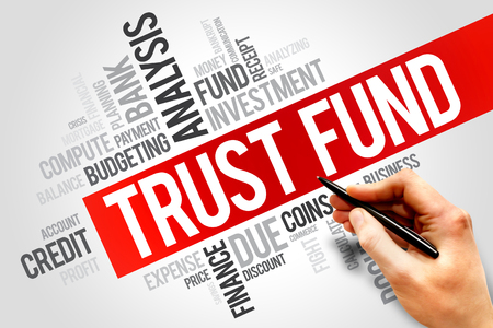 trust: TRUST FUND word cloud, business concept