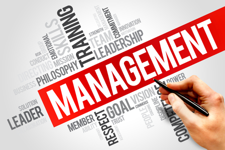 MANAGEMENT word cloud, business concept photo