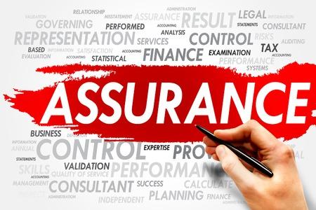 assurance: ASSURANCE word cloud, business concept