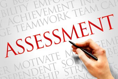 assessment system: ASSESSMENT word cloud, business concept