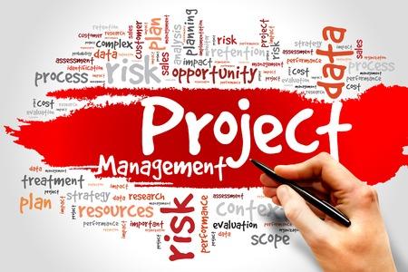 Project Management word cloud, business concept 스톡 콘텐츠