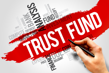 trust business: TRUST FUND word cloud, business concept