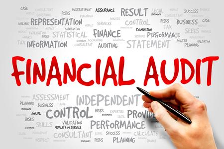 audit: Financial Audit word cloud, business concept