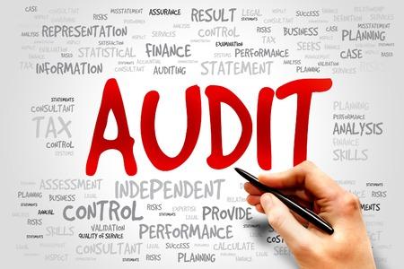 internal audit: AUDIT word cloud, business concept