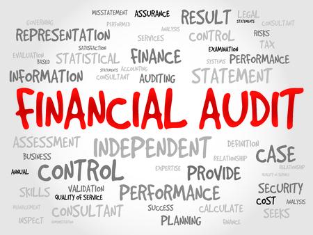 seeks: Financial Audit word cloud, business concept