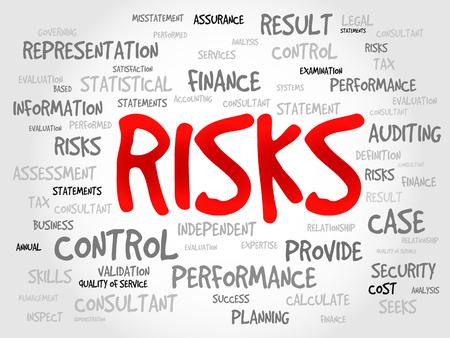 hidden success: RISKS word cloud, business concept