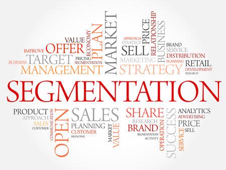 セグメンテーションの単語の雲、ビジネス コンセプト 写真素材 - 45100759