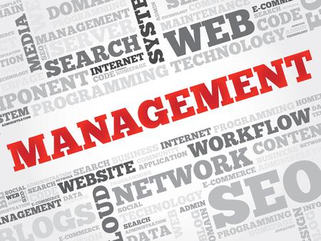estimating: MANAGEMENT word cloud, business concept
