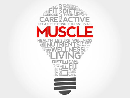 health concept: Muscle bulb word cloud, health concept Vectores