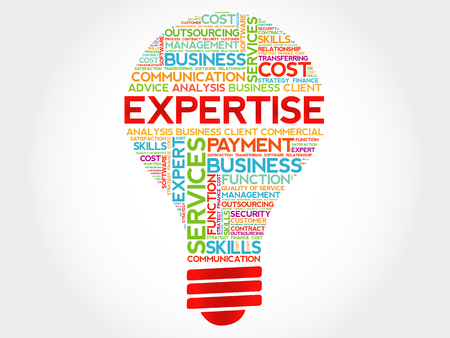 Expertise bulb word cloud, business concept