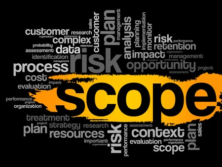 findings: Scope word cloud, business concept