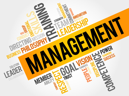 managed: MANAGEMENT word cloud, business concept