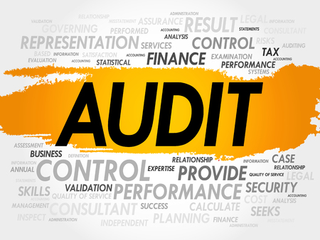 internal: Audit word cloud, business concept