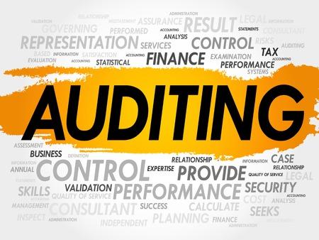 auditoría: AUDITORÍA nube de la palabra, concepto de negocio